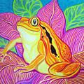 Tomatoe Frog by Nick Gustafson