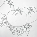 Tomatoes On A Vine In One Line by Vicki  Housel