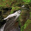 Tompkins Falls Catskills N.y.-7 by Gary Nedbal