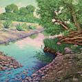 Tonto Creek by Cheryl Fecht