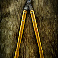 Tools On Wood 34 by YoPedro