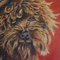 Toots by Julie Dalton Gourgues