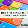 Top 5 Web Development Languages Every Web Developer Needs To Know  by Top 5 Web Development Languages Every Web Developer Needs to Know