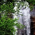 Top Half Of Toccoa Falls by Eva Thomas