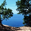 Top Of The Dune At Sleeping Bear Ll by Michelle Calkins