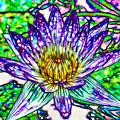 Top View Of A Beautiful Purple Lotus by Jeelan Clark