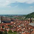 Top View Of Heidelberg, Germany. by Gerlya Sunshine