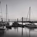 Topsham Boats At Dusk by Pete Hemington