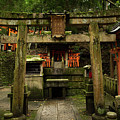 Toriis At Inari by Sam Garcia