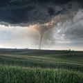 Tornado by Thomas Danilovich