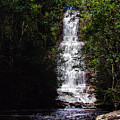 Toron Falls by Galeria Trompiz
