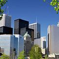 Toronto Downtown Skyline by Oleksiy Maksymenko
