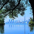 Toronto Framed by Ian  MacDonald