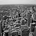 Toronto Ontario Scrapers In Black And White by Debbie Oppermann