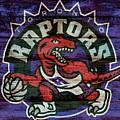 Toronto Raptors Barn Door by Dan Sproul