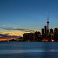Toronto Skyline by Darlene Munro