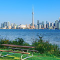 Toronto Skyline From Park by Songquan Deng