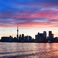 Toronto Skyline by Tammy Wetzel