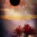 Total Eclipse Of The Sun Tree Art by Debra and Dave Vanderlaan