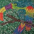 Toucan by Penny Stark