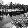 Touch Of Winter Black And White by Debbie Oppermann