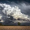 Touch The Sky by Robert Fawcett