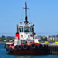 Tough Tugboat by Robert VanDerWal