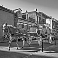 Touring The French Quarter Monochrome by Steve Harrington