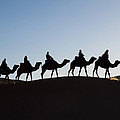 Tourists On Camels Along Top Of Erg by Panoramic Images