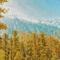 Towards Abshaar Northern Pakistan Near Nathiagali by Syed Muhammad Munir ul Haq