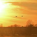 Towards Sunset by Bonfire Photography