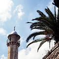 Tower In Jerusalem by Thomas R Fletcher