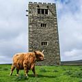 Tower Of Joy by Mark Morton