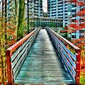 Towson University Walkway by Stephen Younts