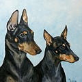 Toy Manchester Terriers by Monika Brauer