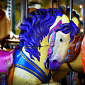 Toy Pegasus by Cabral Stock