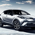 Toyota C-hr by Dorothy Binder