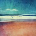 Traces In The Sand by Dirk Wuestenhagen