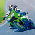 Track Day - Kawasaki Zx9 by Brian  Commerford
