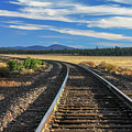 Tracks At Crater Lake by James Eddy