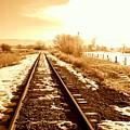 Tracks by Caroline Clark