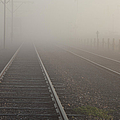 Tracks In The Fog  by Larry Braun