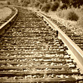Tracks by Tina Meador