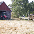 Tractor At A Wheat Field by D R