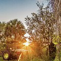 Tractor At Sunset by Clyde Scent