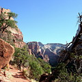 Trail - Zion Park by Christiane Schulze Art And Photography