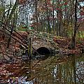 Trail Bridge by Larry Braun