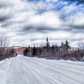 Trail One In Old Forge 2 by David Patterson