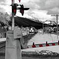 Train A Comin by Lisa Knechtel
