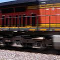 Train In Motion by Anne Cameron Cutri